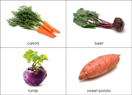Stems Of Plants We Eat