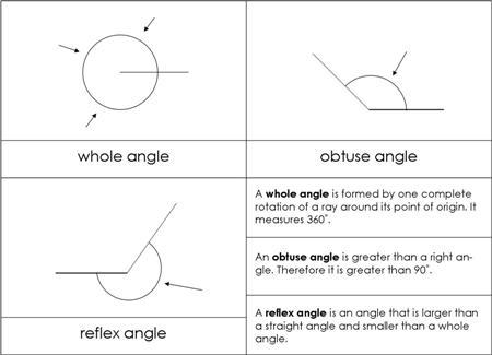 Alternate Angles | Types of Alternate Angles | Math@TutorVista.com