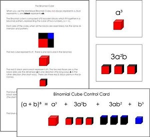Binomial Cube Cards & Equations