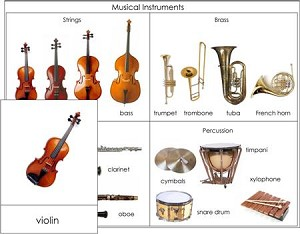 Printables Types Of Musical Instrument musical instruments nomenclature from montessori for everyone types of nomenclature