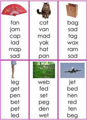 Pink Series Word Lists
